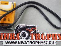 Ремень приводной компрессора кондиционера 2123 4РК810 CONTITECH